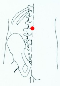 Gate of Life (in the lower spine)
