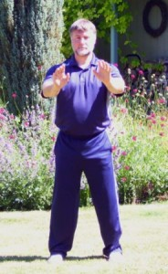 Refine Your Qigong Posture